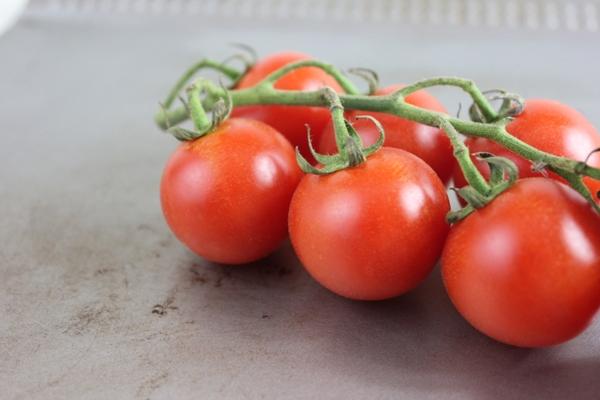 with tomato and basil cherry tomato ragu with polenta polenta 20 ways ...